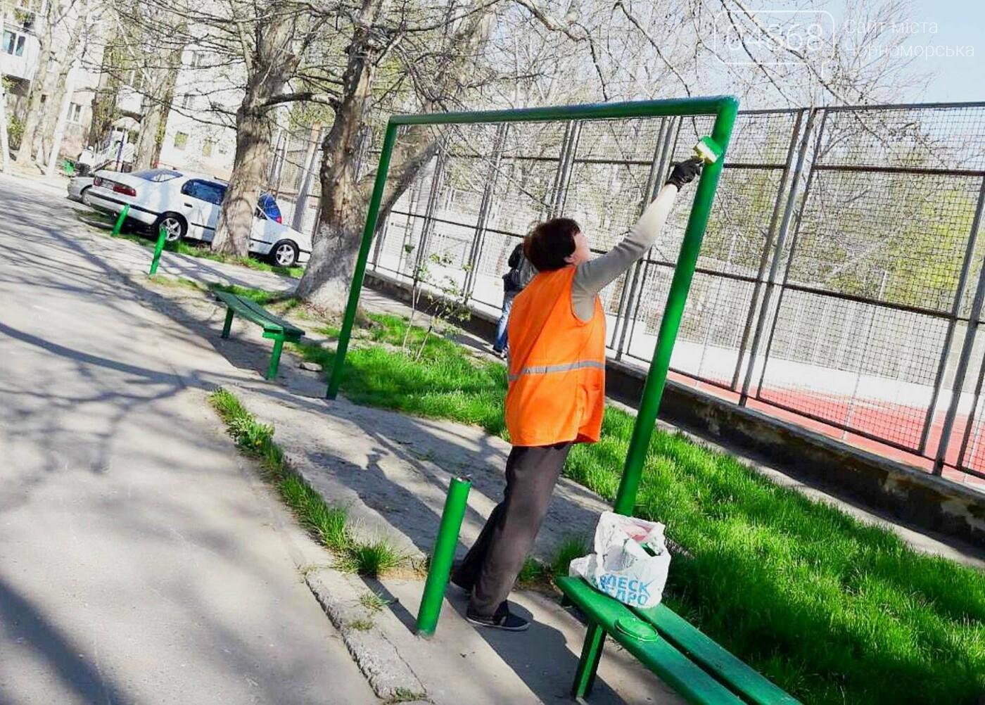 В Черноморске высажено 500 новых деревьев и кустарников, фото-15