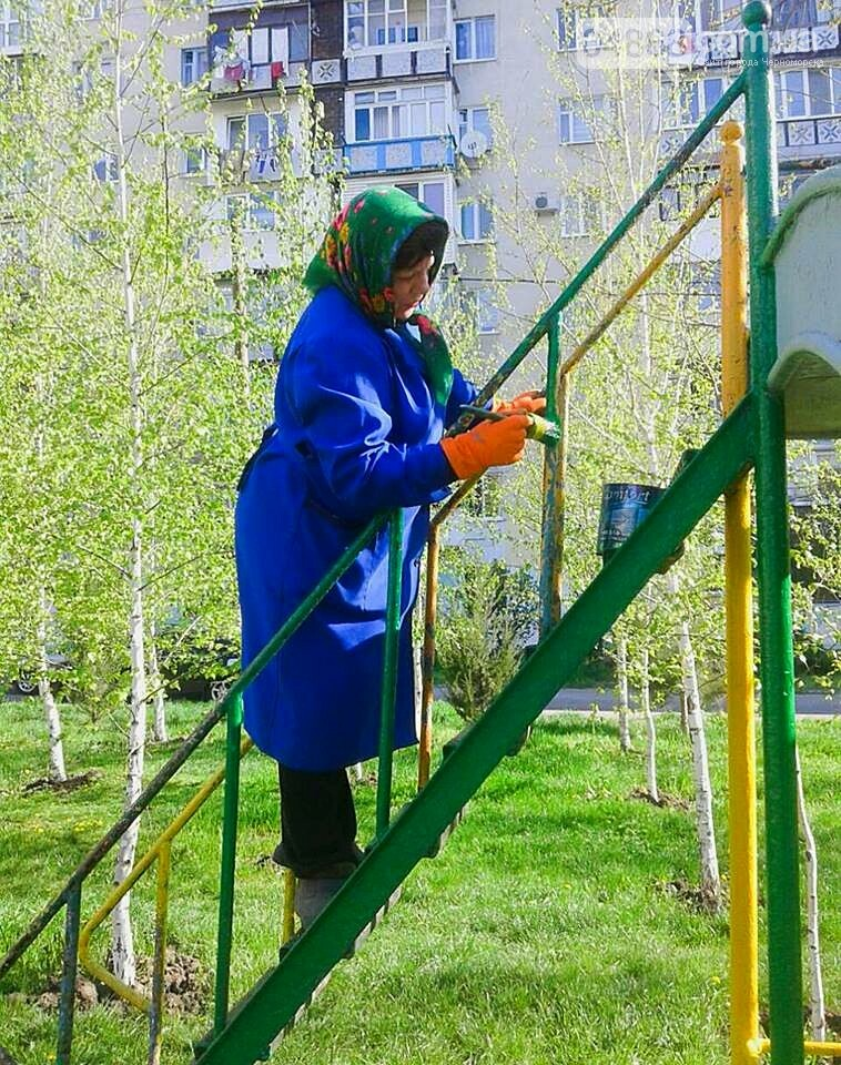 В Черноморске высажено 500 новых деревьев и кустарников, фото-9