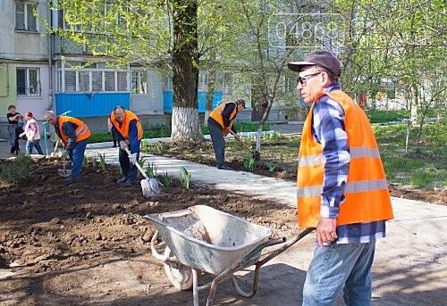 В Черноморске высажено 500 новых деревьев и кустарников, фото-3