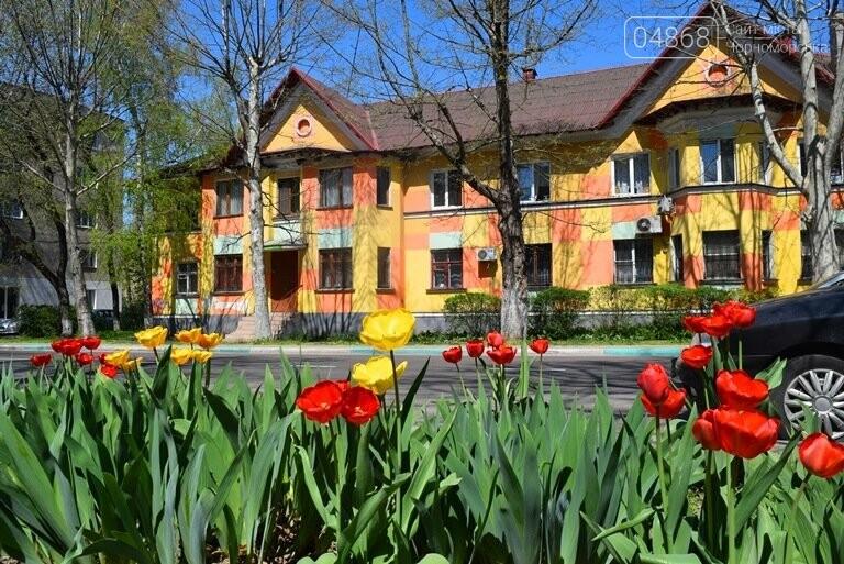 На майские праздники в Черноморске будет теплая и солнечная погода, фото-3