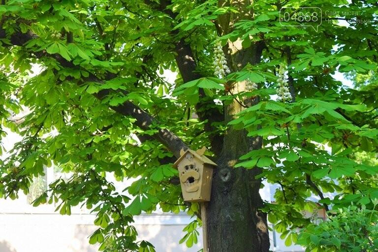 Живи, Корабельная! Ребята из Школы лидеров продолжают менять облик одной из первых улиц Черноморска, фото-8