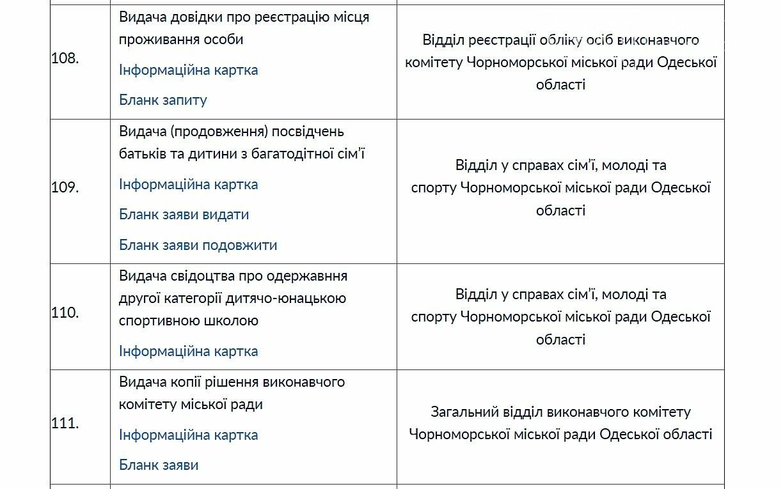 Свыше 250 услуг можно получить в админцентре Черноморска, фото-4
