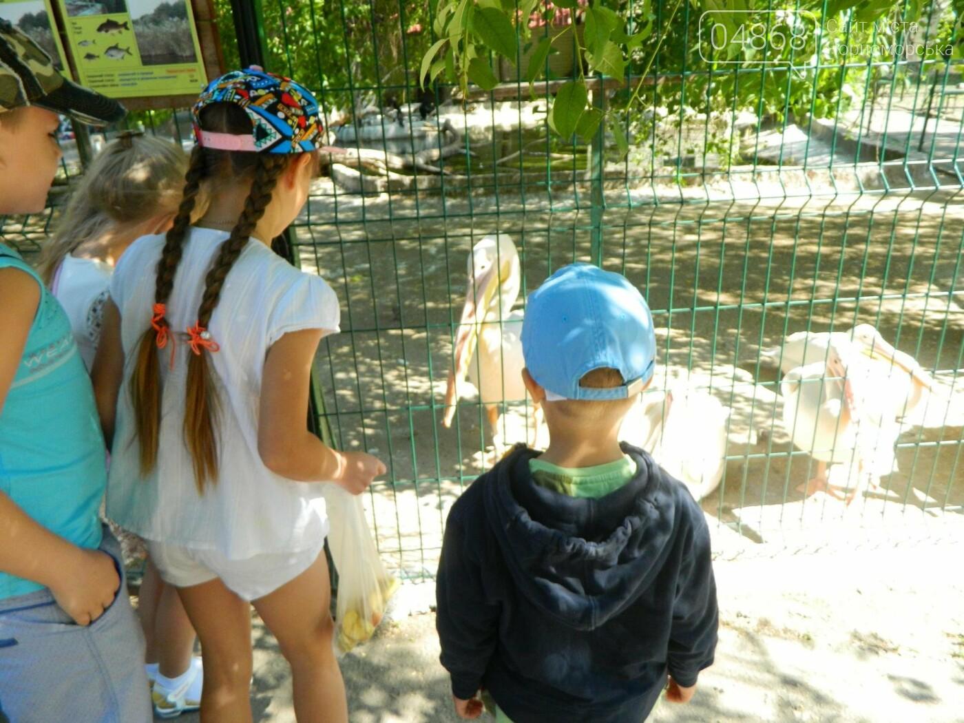 Дети из реабилитационного центра «Радуга» посетили зоопарк, фото-14