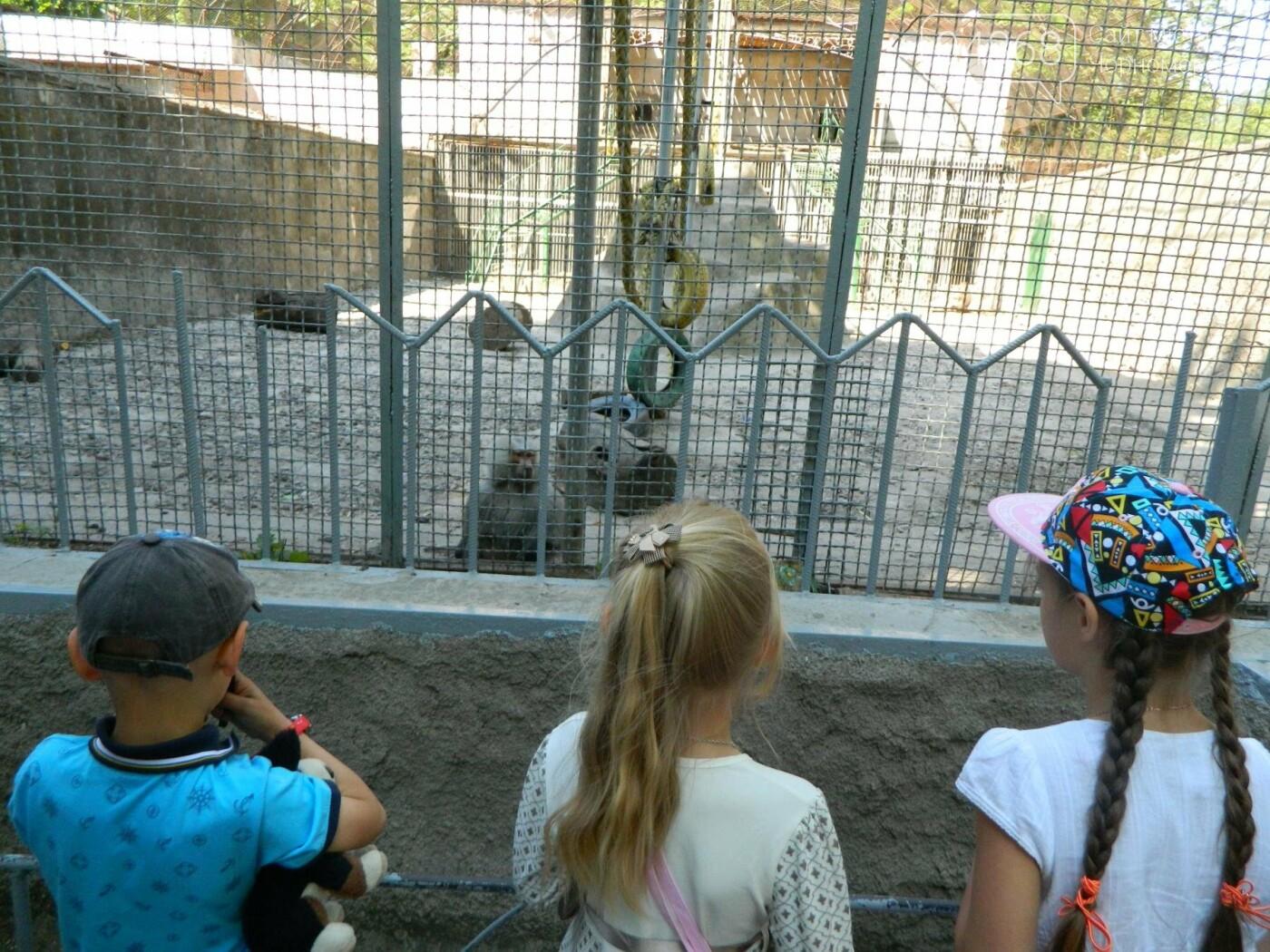 Дети из реабилитационного центра «Радуга» посетили зоопарк, фото-4