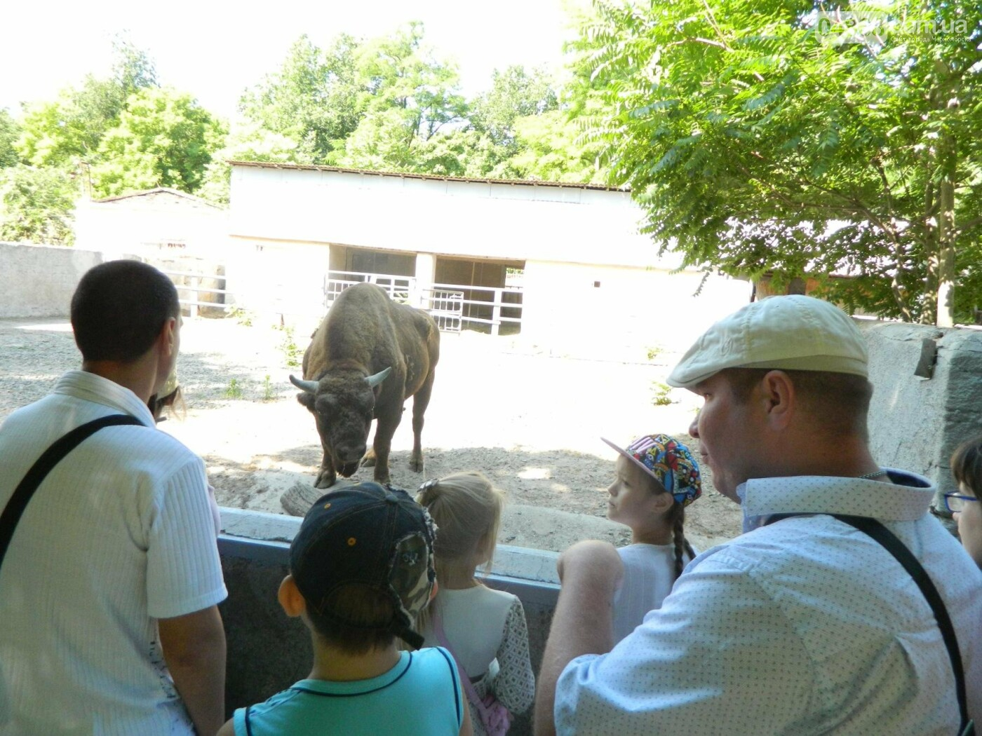 Дети из реабилитационного центра «Радуга» посетили зоопарк, фото-3