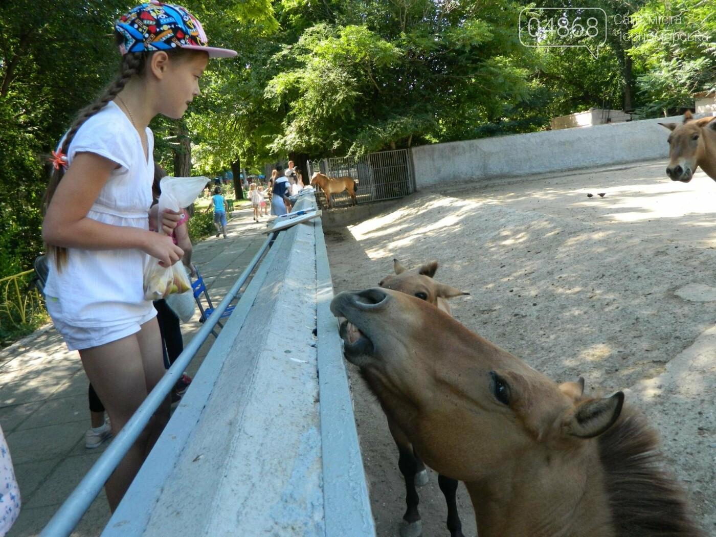 Дети из реабилитационного центра «Радуга» посетили зоопарк, фото-10