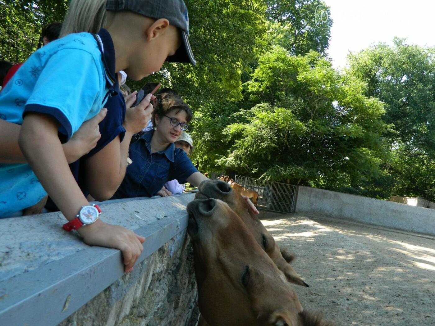 Дети из реабилитационного центра «Радуга» посетили зоопарк, фото-9