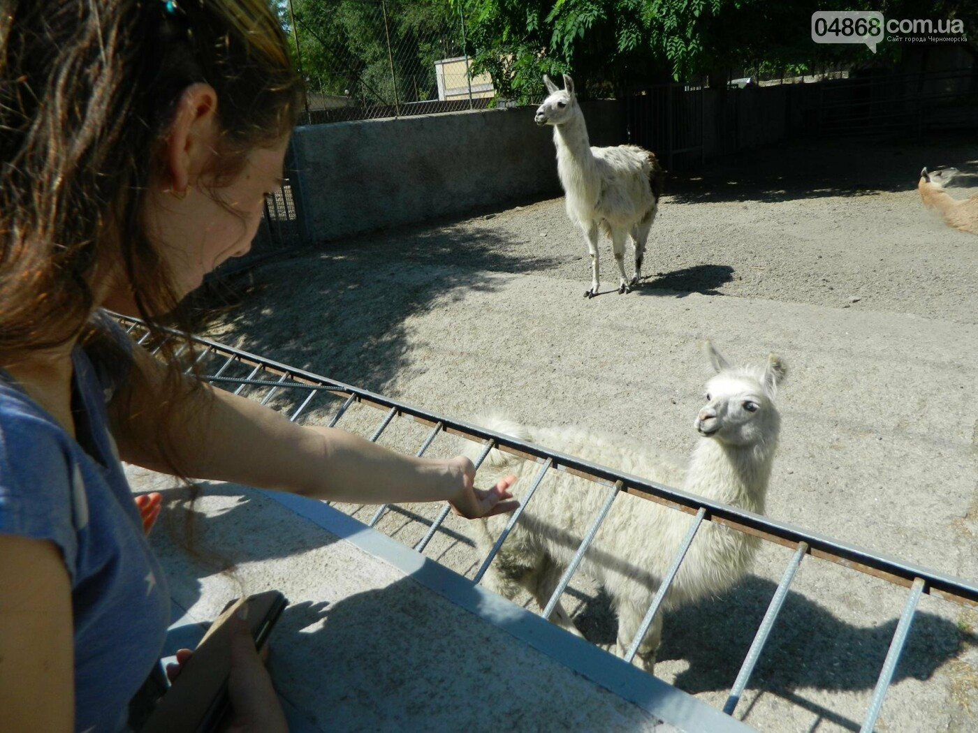 Дети из реабилитационного центра «Радуга» посетили зоопарк, фото-8