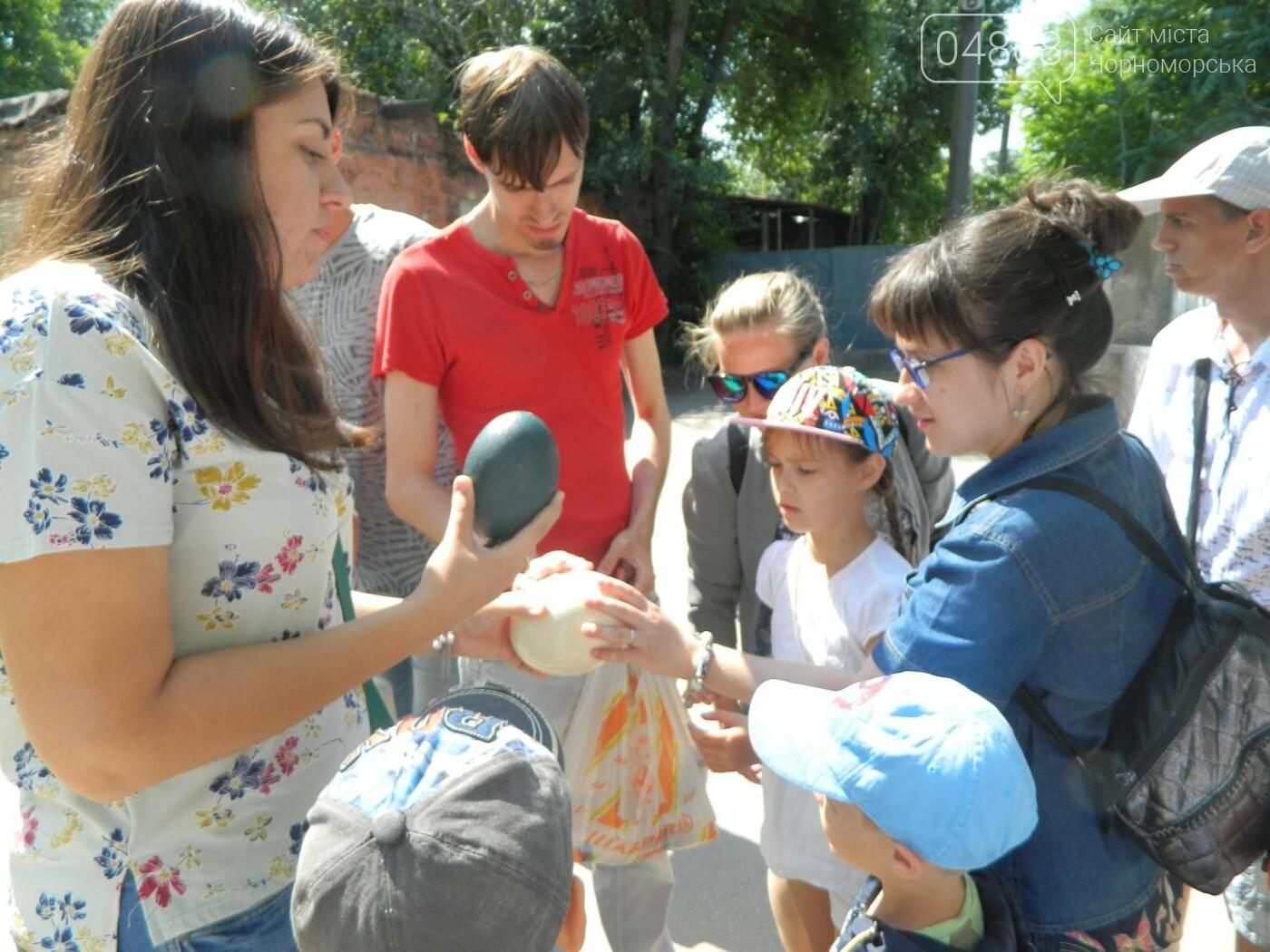 Дети из реабилитационного центра «Радуга» посетили зоопарк, фото-15