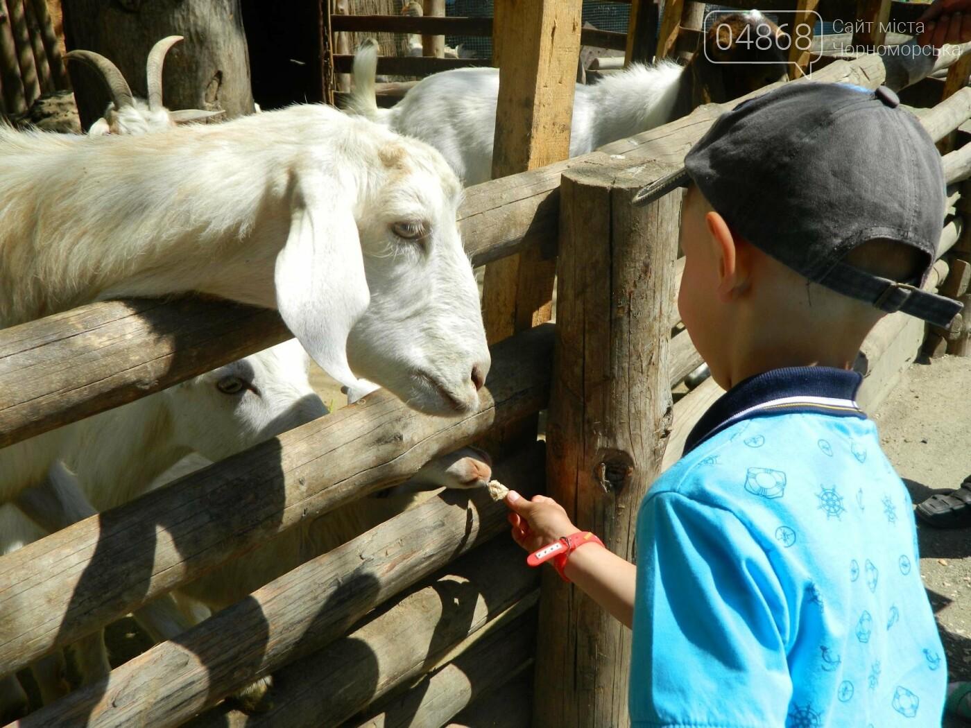 Дети из реабилитационного центра «Радуга» посетили зоопарк, фото-11