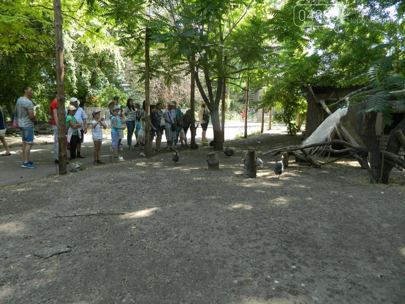 Дети из реабилитационного центра «Радуга» посетили зоопарк, фото-6