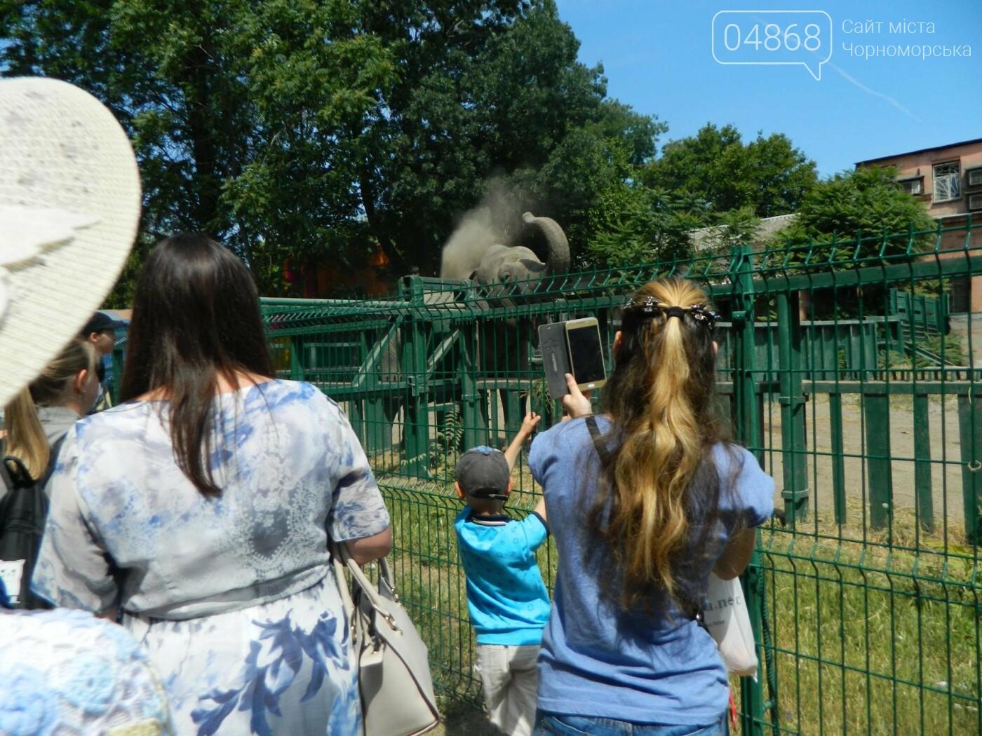 Дети из реабилитационного центра «Радуга» посетили зоопарк, фото-7