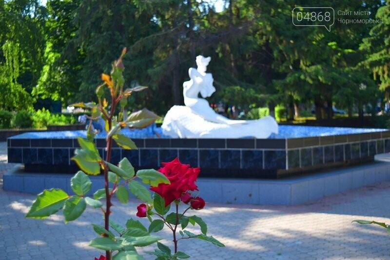Черноморск – город роз (фоторепортаж), фото-2