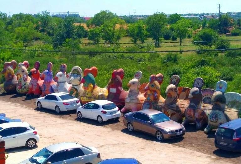 «Чудо-птицы» покинули Черноморск и улетели в «Нью-Васюки», фото-1