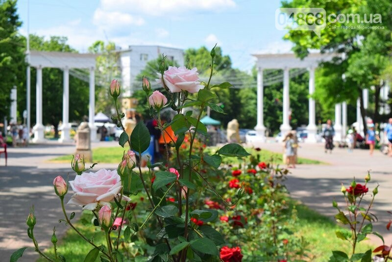 Чего ждать жителям Черноморска в августе: длинные выходные, рост цен, фестивали, больше бесплатных лекарств и 9 дней дождя, фото-4
