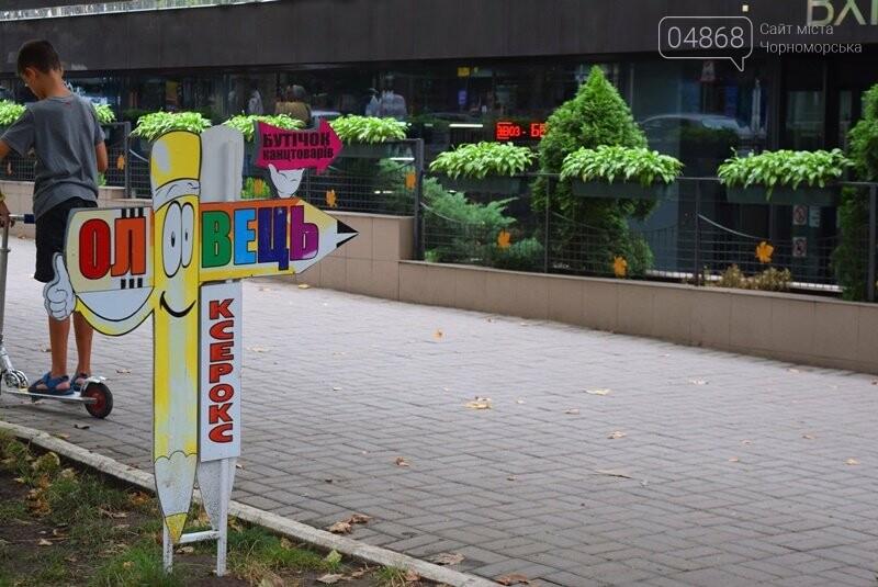 «Закон не для всех»: о «мимоходах» на улицах Черноморска, фото-5