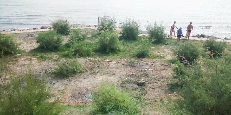 Ликвидация палаточного городка на побережье Черноморска. Возвращение «дикарей». , фото-5