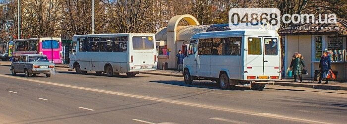 Социальная защита в Черноморске: школьникам – канцтовары, студентам – проезд, фото-3