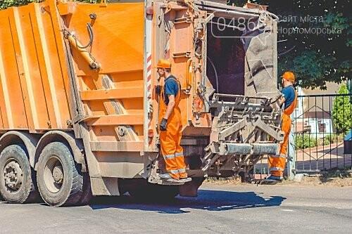 О раздельном сборе твёрдых и не очень бытовых отходов в Черноморске, фото-3