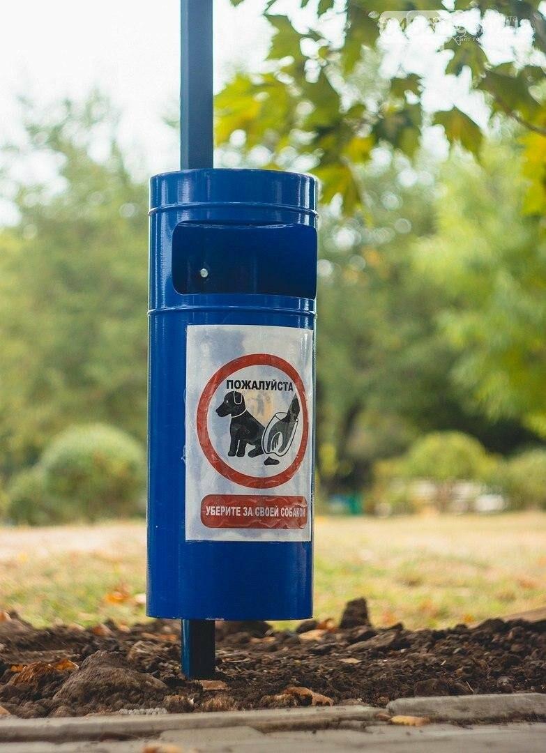 Ошейник, поводок и намордник: разработаны правила содержания домашних животных в Черноморске, фото-8