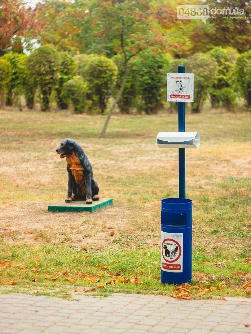 Ошейник, поводок и намордник: разработаны правила содержания домашних животных в Черноморске, фото-7
