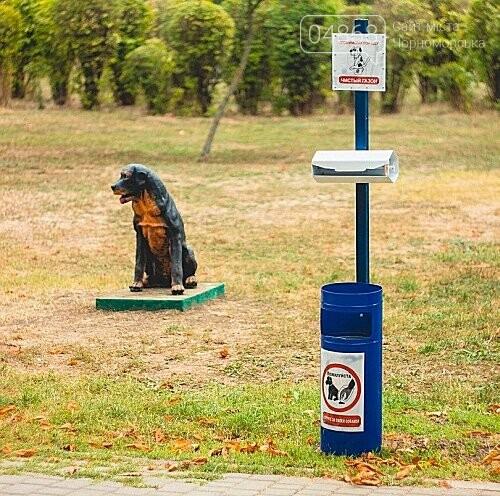 Ошейник, поводок и намордник: разработаны правила содержания домашних животных в Черноморске, фото-2