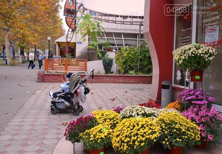В Черноморске пройдёт осенний субботник, фото-9