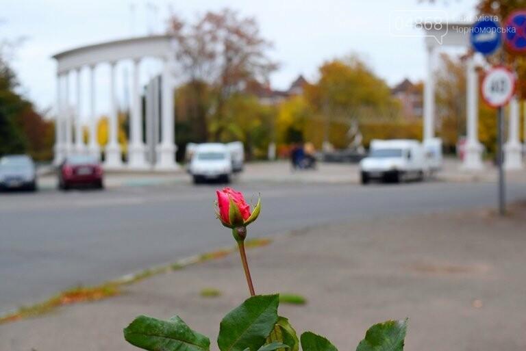 В Черноморске пройдёт осенний субботник, фото-2