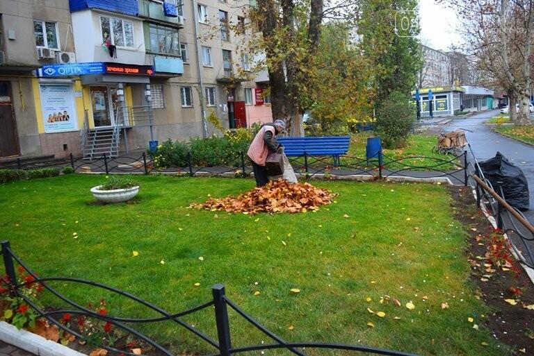 «Листья жёлтые над городом»: специалисты Экоцентра Черноморска рассказали, нужно ли убирать опавшую листву, фото-4