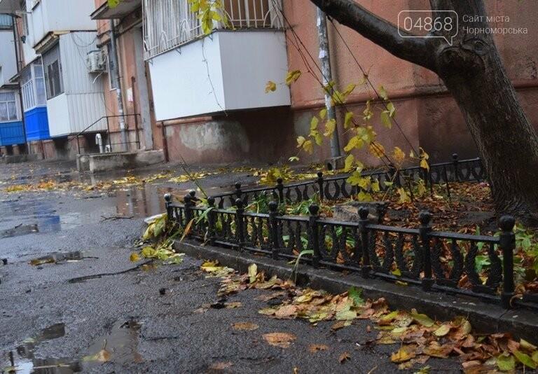 «Листья жёлтые над городом»: специалисты Экоцентра Черноморска рассказали, нужно ли убирать опавшую листву, фото-2