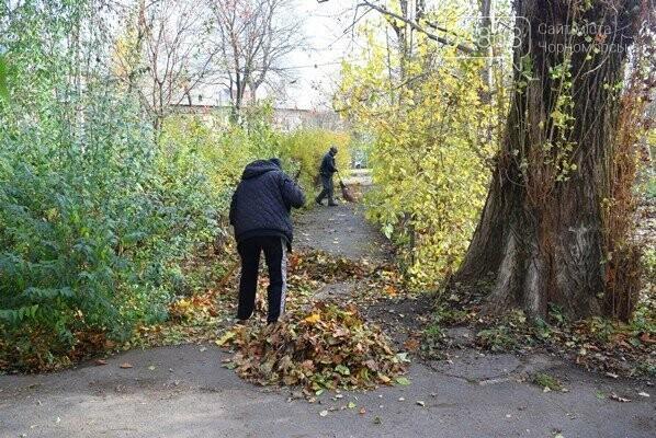 Субботник в Черноморске: как это было, фото-23