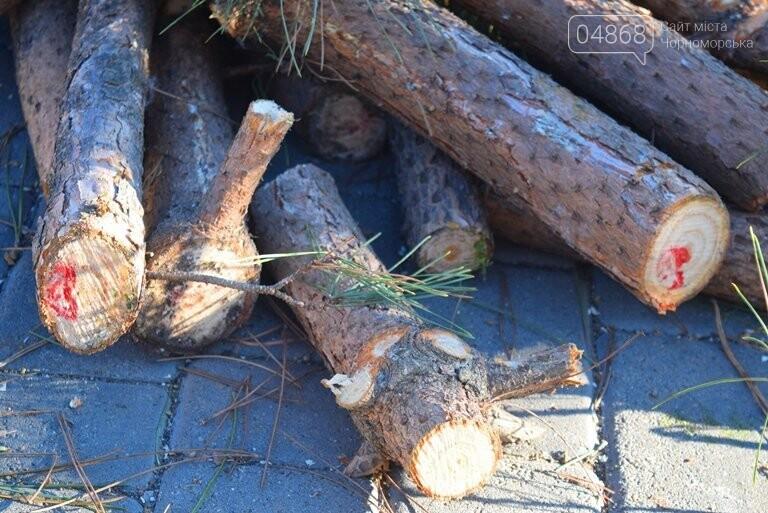 В Черноморске устанавливают главную городскую ёлку, фото-2