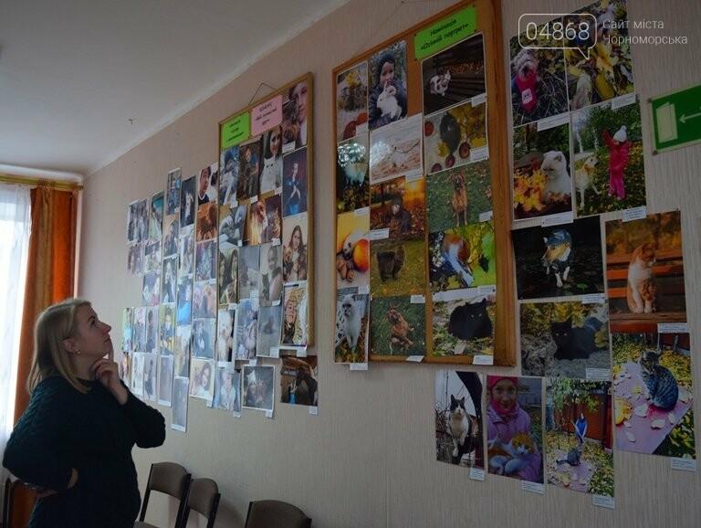 В Черноморске подвели итоги фотоконкурса «Мой пушистый друг», фото-32