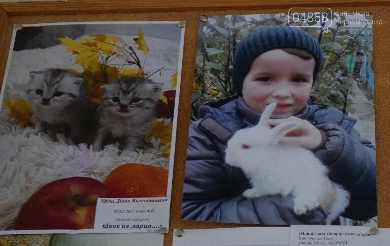 В Черноморске подвели итоги фотоконкурса «Мой пушистый друг», фото-17