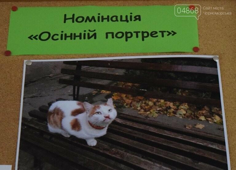 В Черноморске подвели итоги фотоконкурса «Мой пушистый друг», фото-7