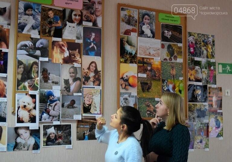 В Черноморске подвели итоги фотоконкурса «Мой пушистый друг», фото-19