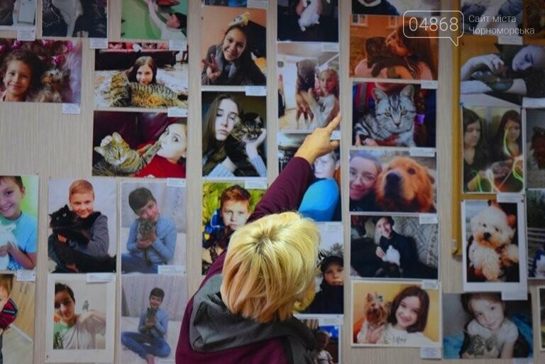В Черноморске подвели итоги фотоконкурса «Мой пушистый друг», фото-1