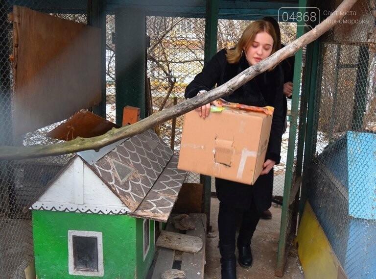 В Черноморске спасли птицу, занесённую в «Красную книгу» (видео), фото-2
