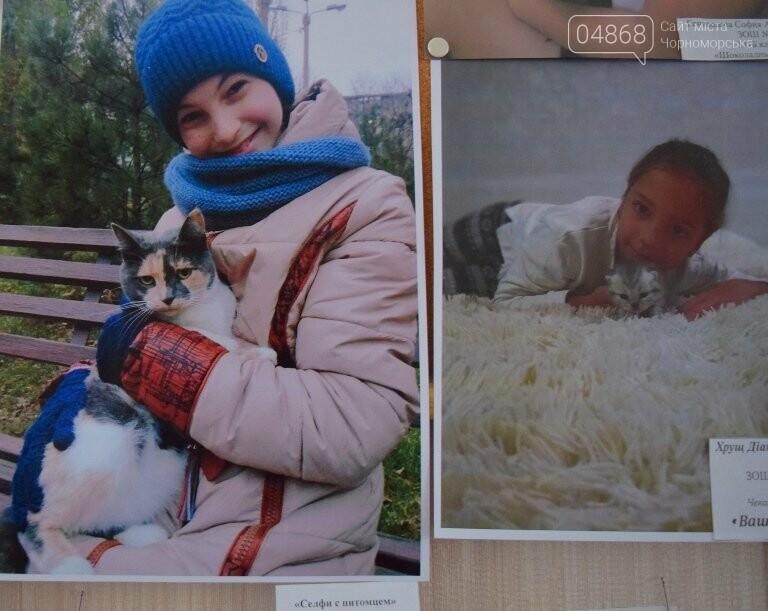 В Черноморске подвели итоги фотоконкурса «Мой пушистый друг», фото-21