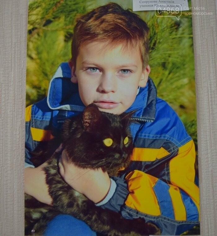 В Черноморске подвели итоги фотоконкурса «Мой пушистый друг», фото-4