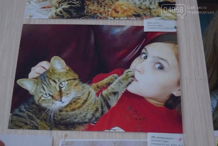 В Черноморске подвели итоги фотоконкурса «Мой пушистый друг», фото-27
