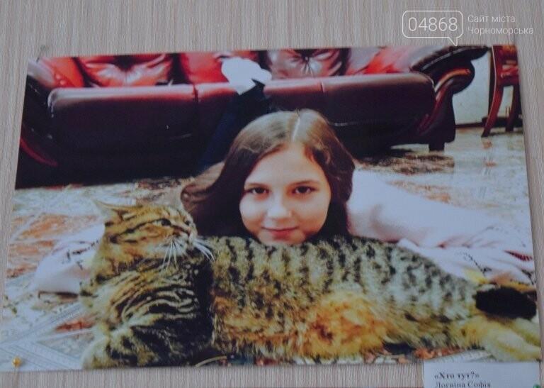 В Черноморске подвели итоги фотоконкурса «Мой пушистый друг», фото-28