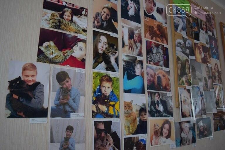 В Черноморске подвели итоги фотоконкурса «Мой пушистый друг», фото-29