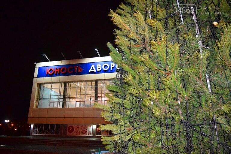 Кражей гирлянд с главной новогодней ёлки Черноморска занялась полиция, фото-4