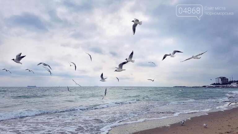 В ближайшую неделю синоптики обещают в Черноморске пасмурную погоду, гололёд и небольшой дождь, фото-3