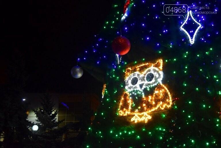 В Черноморске засверкала огнями новогодняя ёлка от «Люмьера», фото-5