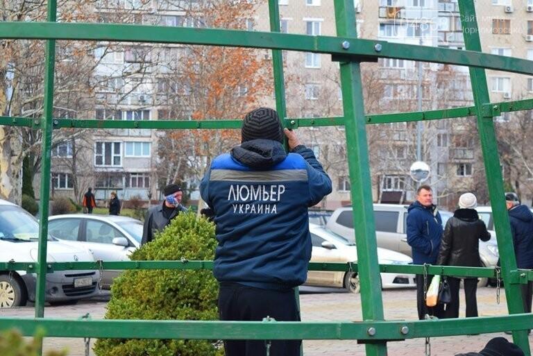 В Черноморске засверкала огнями новогодняя ёлка от «Люмьера», фото-1