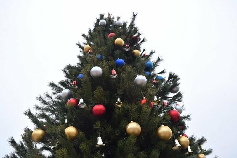 Новогодняя ёлка черноморских портовиков примеряет праздничный наряд, фото-8