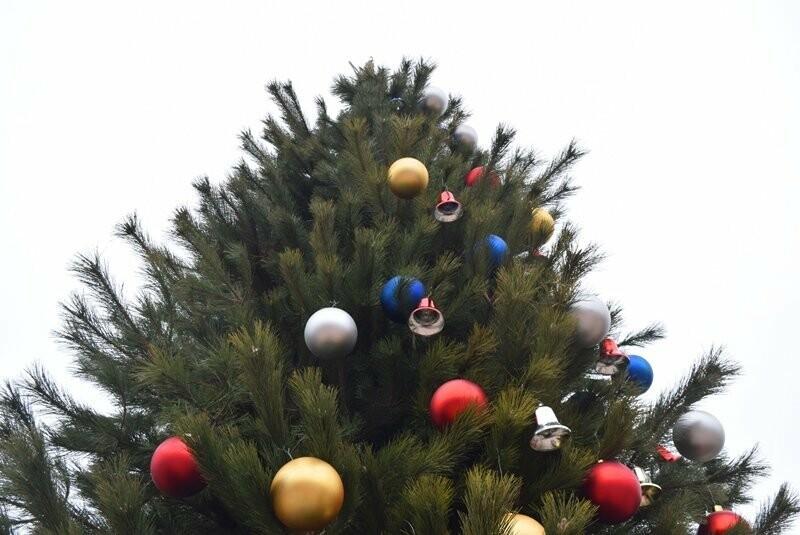 Новогодняя ёлка черноморских портовиков примеряет праздничный наряд, фото-11
