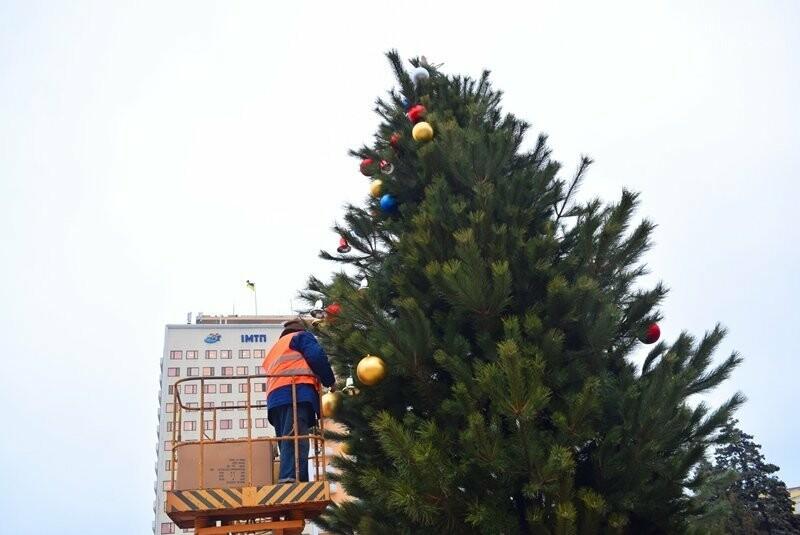 Новогодняя ёлка черноморских портовиков примеряет праздничный наряд, фото-3